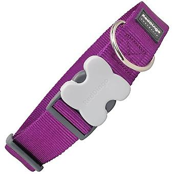 Red Dingo Dog Collar Classic Purple (Dogs , Collars, Leads and Harnesses , Collars)