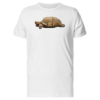 African Spurred Tortoise Photo Tee Men's -Image by Shutterstock