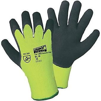 Griffy 14932 Size (gloves): 10, XL