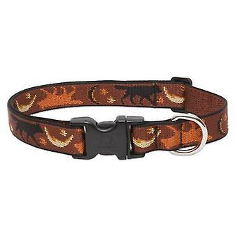 Lupine Collar Lge 1