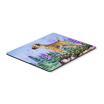Carolines Treasures  SS8664MP Border Terrier Mouse pad, hot pad, or trivet