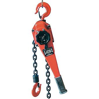 Berger & Schröter 60318 Double-ratchet chain block 3000 kg Load-bearing capacity: 3000 kg