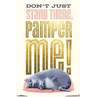 Hemmelige liv af kæledyr - Chloe plakat plakat Print
