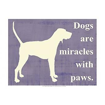 Dogs are miracles with paws Poster Print by Vision studio (19 x 13)