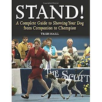 Stehen!: A Complete Guide to zeigt Ihr Hund von Begleiter zu Champion