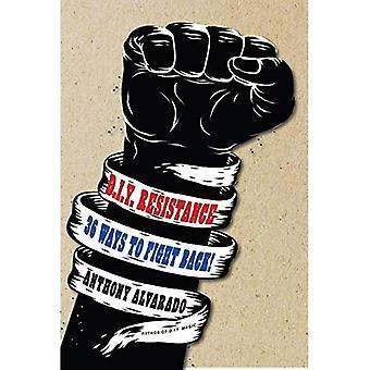 D.i.y Resistance