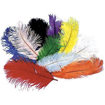 Struisvogel verontreinigingspluimen paars