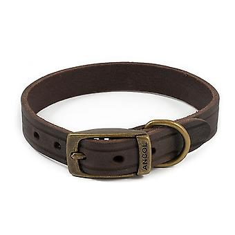 Ancol Heritage Latigo läder Pet Collar 22mm