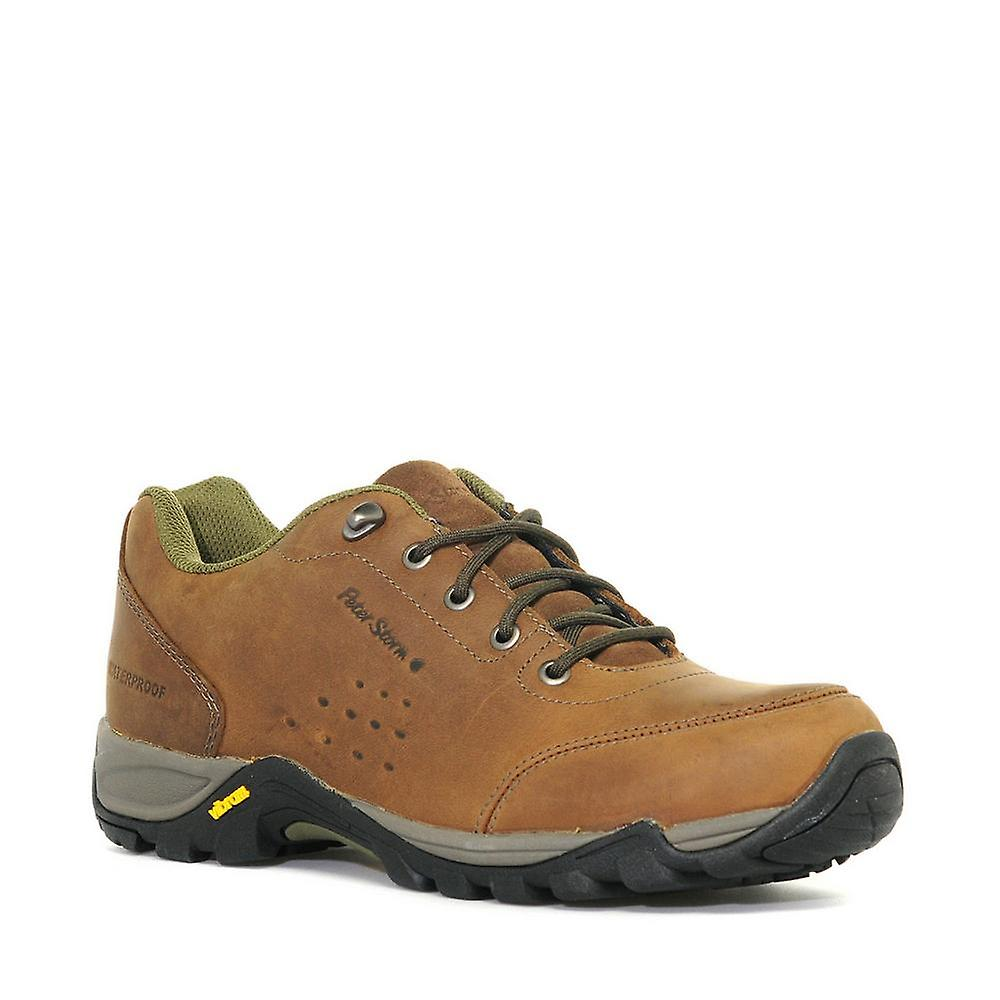 Peter Storm Men's Grizedale Walking Shoe