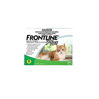 Frontline Plus 6 Pack Cat