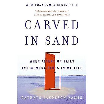 Carved in Sand: When Attention Fails and Memory Fades in Midlife