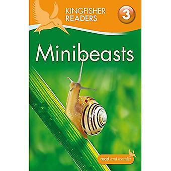 Kingfisher Readers: Minibeasts (Level 3: Reading Alone with Some Help) (Kingfisher Readers Level 3)