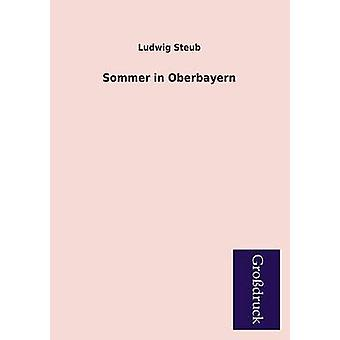 Sommer in Oberbayern by Steub & Ludwig
