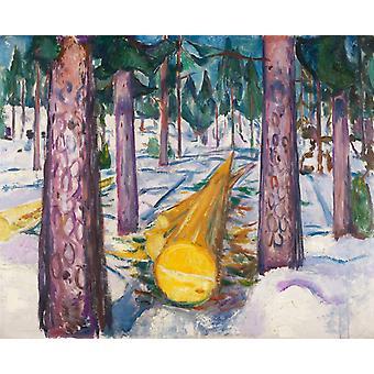 Yellow Wood,Edvard Munch,50x40cm
