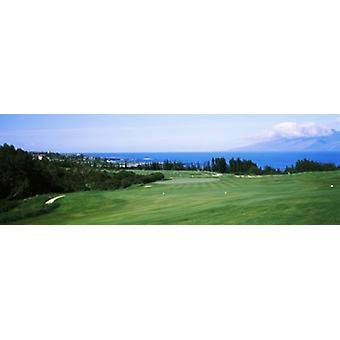 Golf course at the oceanside Kapalua Golf course Maui Hawaii USA Poster Print