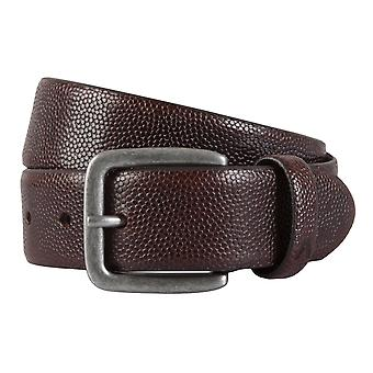 ALBERTO belt leather men's belts leather D.Braun 1928