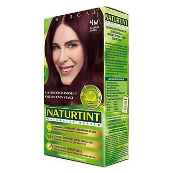 Naturtint Hair Color 4M Mahogany Chestnut (Hair care , Dyes)