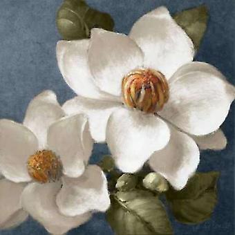 Magnolias on Blue II Poster Print by Lanie Loreth