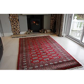Rød Pakistan Mori orientalsk tæppe