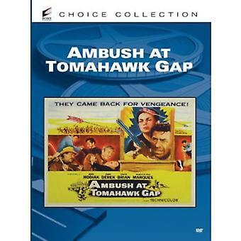 Ambush at Tomahawk Gap [DVD] USA import
