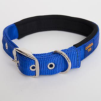 Ginger Ted Nylon Padded Dog Collar Blue (3 sizes)