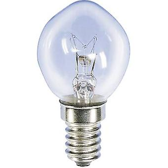 Bicycle light bulb 14 V 5 W Clear 00789510