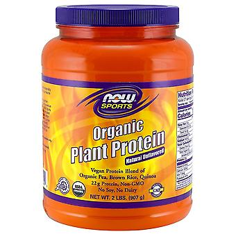 Now Foods Plant Protein Organic Unflavored 907 gr (Sport , Muscle mass , Proteins)