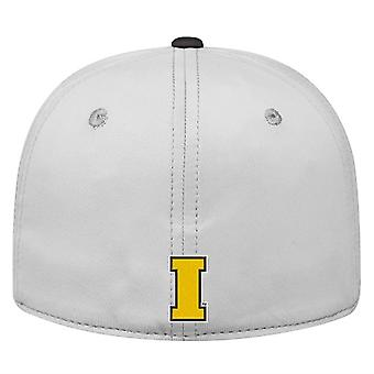 Iowa Hawkeyes NCAA TOW Impact Gray Stretch Fitted Hat