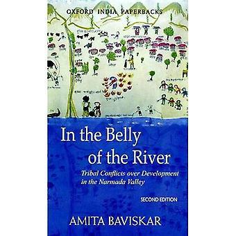 I magen på floden: stamkonflikter över utvecklingen i dalen Narmada