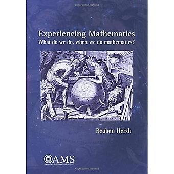 Experiencing Mathematics: What do we do, when we do mathematics?