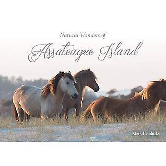 Natural Wonders of Assateague Island