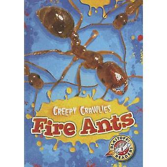Fire Ants by Kari Schuetz - 9781626172227 Book