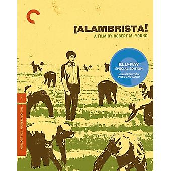 Alambrista [BLU-RAY] USA import
