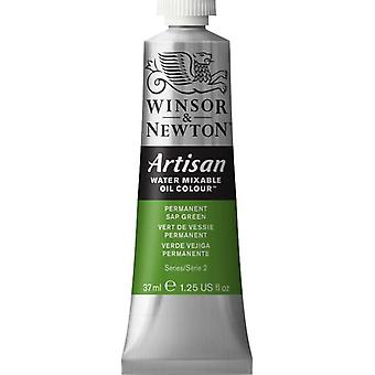 Winsor & Newton Artisan vatten blandbart olja färg 37ml (503 Permanent Sap Green S2)