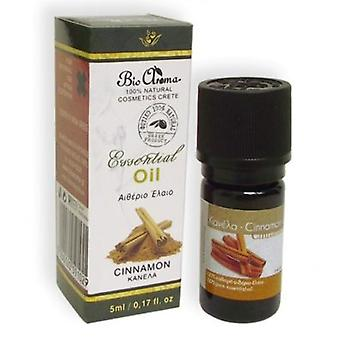 Cinnamon pure essential oil