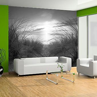 Fototapete - Strand (schwarz-weiß)