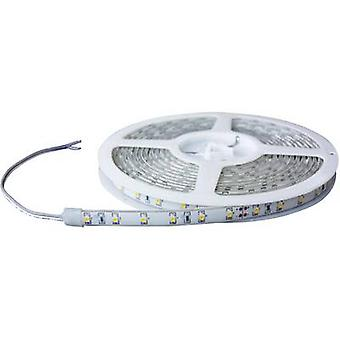 Barthelme LED strip open cable ends 24 V 100 cm Blue 51618414 51618414
