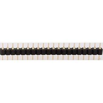 BKL électronique 10120538 Straight