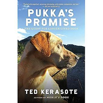 Pukka's löfte: jakten på 297Uuo hundar
