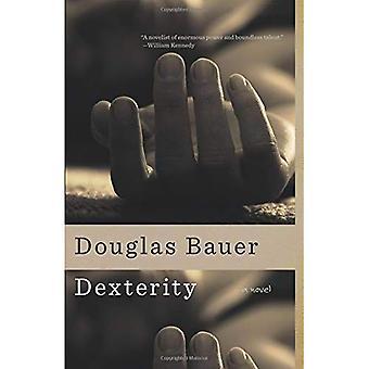 Fingerfärdighet: En roman