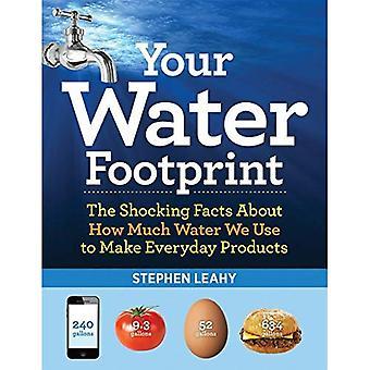 Din vattenfotavtryck: Chockerande fakta om hur mycket vatten vi använder att göra vardagliga produkter