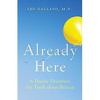 Déjà ici: un docteur Découvre la vérité sur le ciel