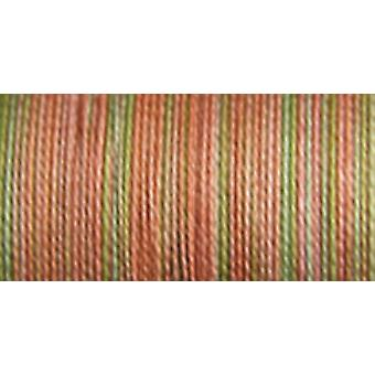 Sulky Blendables Thread 12 Weight 330 Yards Summer Fruit 713 4092