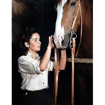 National Velvet Elizabeth Taylor 1944 Photo Print
