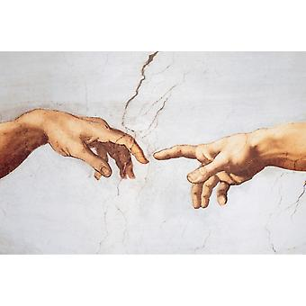 Michelangelo Creation Poster Print Poster Poster Print