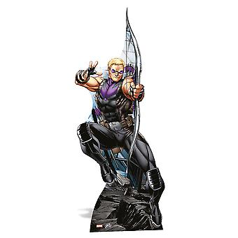 Hawkeye Lifesize Cardboard Cutout / Standee / Standup - Marvel The Avengers Super Hero