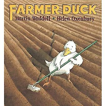 Pato granjero