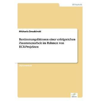 Bestimmungsfaktoren Einer an Zusammenarbeit Im Rahmen von ECRProjekten von Zmudzinski & Michaela
