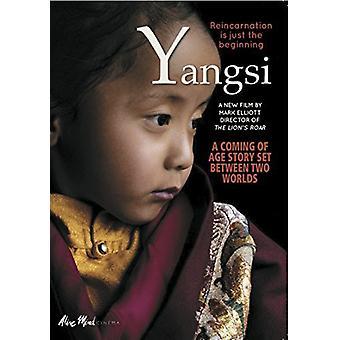 Yangsi reinkarnation er bare begyndelsen [DVD] USA importere