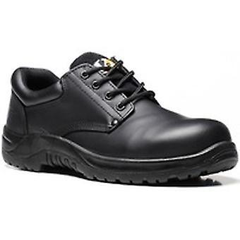 V12 VR608 Tiger Black Derby Shoe EN20345:2011-S3 Size 10